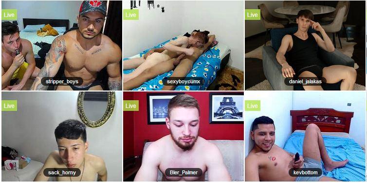 Hombres y chicos con webcam en directo